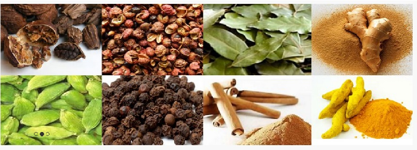 Aeron International Nepal - Agriculture and Animal Products - Ayurvedic and Herbal - NepalB2B