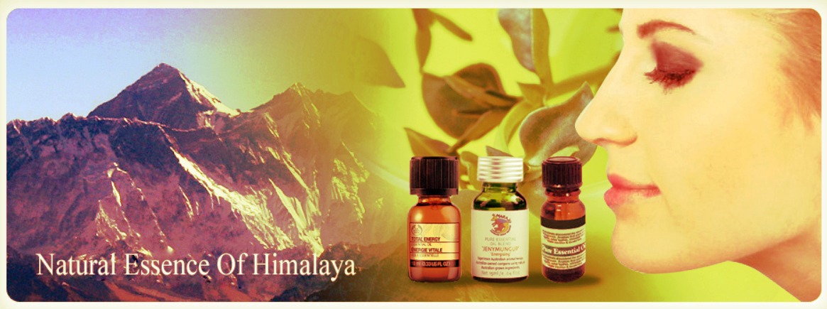Everest Aroma Industries Pvt. Ltd - Agriculture and Animal Products - Ayurvedic and Herbal - NepalB2B