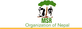M.S.R. Development Institute