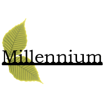 Millennium Tea Shop