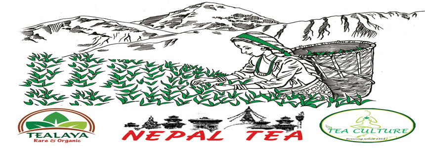 Nepal Tea & Coffee Promotion Center - Agriculture and Animal Products - NepalB2B