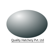 Quality Hatchery Pvt. Ltd