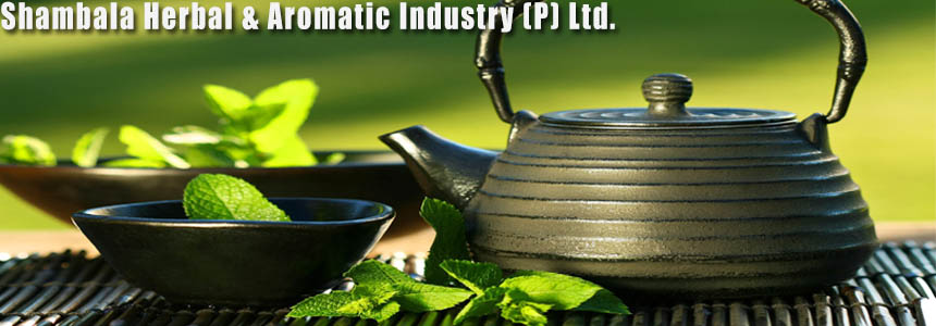 Shambhala Herbal & Aromatic Industry (P) Ltd. - Agriculture and Animal Products - Ayurvedic and Herbal - NepalB2B