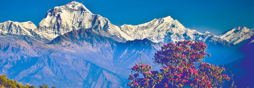 Yatri Trekking - Travel and Trekking - NepalB2B