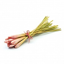 Lemon Grass - Ayurvedic and Herbal - NepalB2B