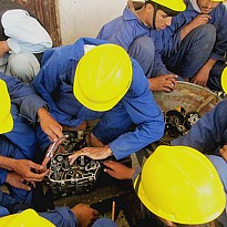 Vocational Training Provision - Education and Training - NepalB2B