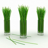 Lemon Grass Oil - Agriculture and Animal Products - Ayurvedic and Herbal - NepalB2B