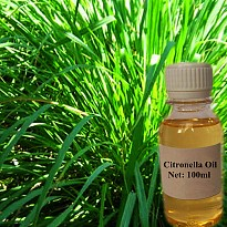 Citronella Oil (Java Type) - Agriculture and Animal Products - Ayurvedic and Herbal - NepalB2B