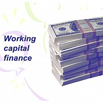 Working Capital Financing - Financial Institutions - NepalB2B