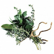 Medicinal Herbs - Agriculture and Animal Products - Ayurvedic and Herbal - NepalB2B