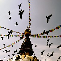 Local Tours and Sightseeing - Travel and Trekking - NepalB2B