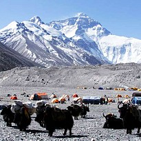 Tibet Trek(Namtso & Everest Base Camp) - Travel and Trekking - NepalB2B