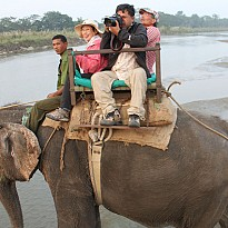 Wildlife Safari - Travel and Trekking - NepalB2B