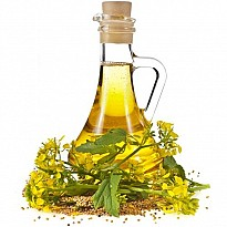 Mustard Oil - Agriculture and Animal Products - NepalB2B