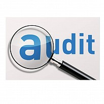 Financial Statement Audit - Financial Institutions - NepalB2B
